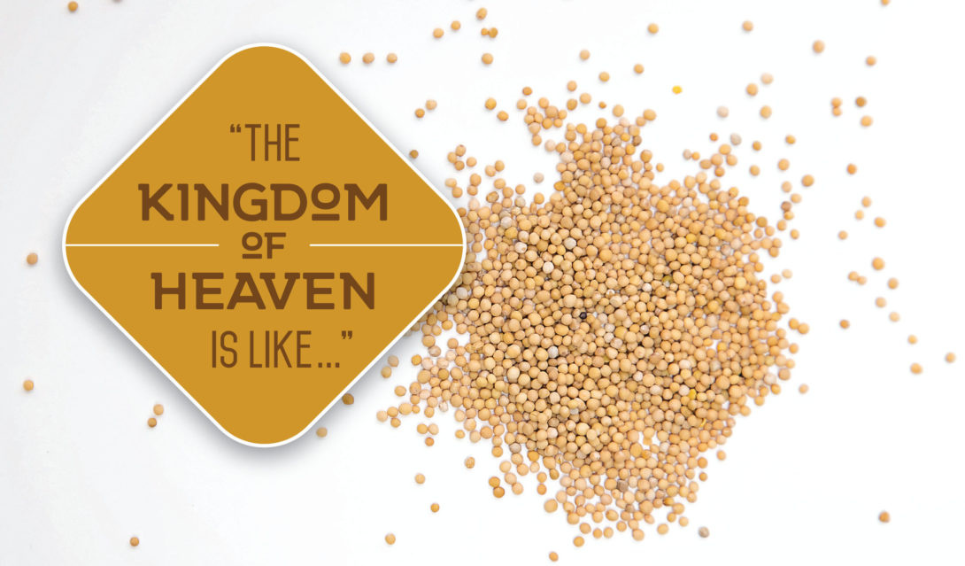 The Kingdom of Heaven is Like... (image of seeds)