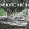 Jesus Is Tempted in the Desert