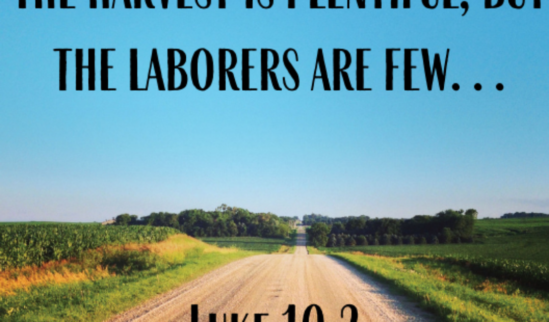 The harvest is plentiful, but the laborers are few... -Luke 10:2